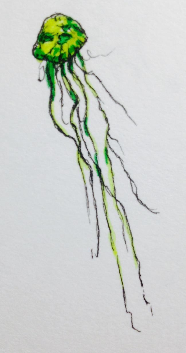 jellyfish II by GrimZombie
