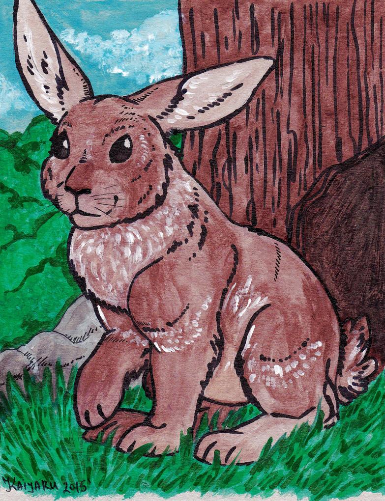 Rabbit by Kaiyaru