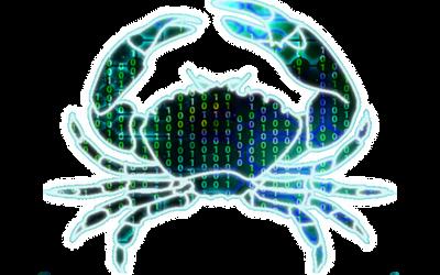 Logotipo para el equipo de desarrollo Jaca.