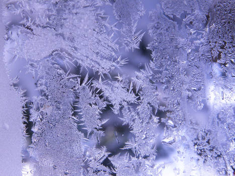Frost Stock9