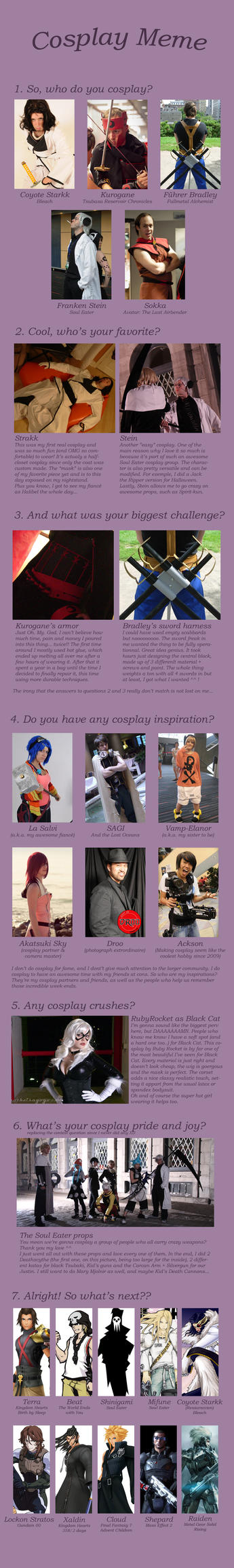 Flare8521 Cosplay Meme by flare8521
