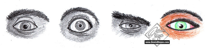 a study of the human eye