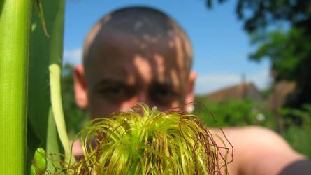 karramba!!!mee,and the natural nature.