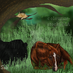Tag: Tornado and Ellie by sable-silence