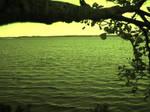 lake..ing