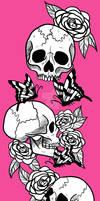 feminine skulls