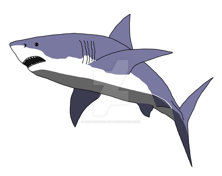 Shark by TheThunder-Art