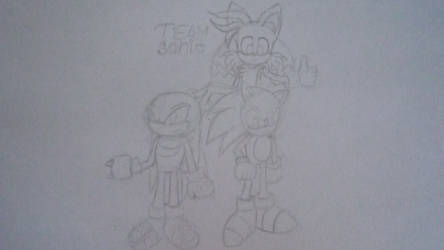 Team Sonic by Tailsu-cun