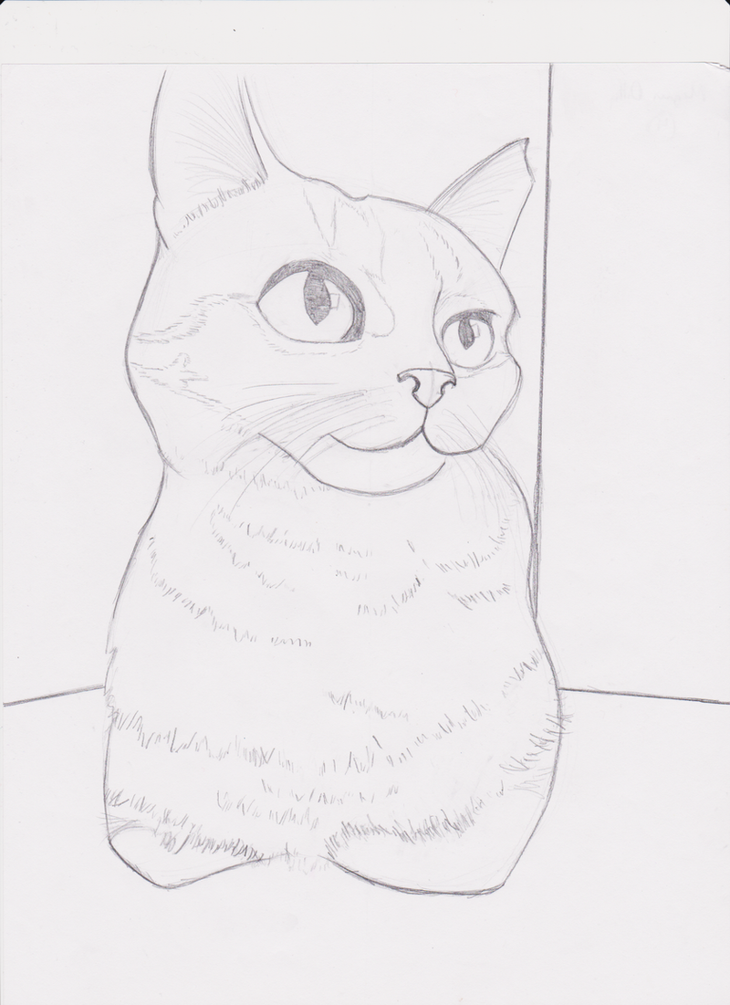 Contour Line Drawing Of A Cat : Cat contour drawing by carryonlostfriends on deviantart