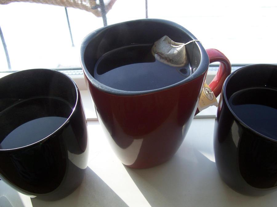 three cups of tea pdf