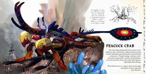 Peacock Crab