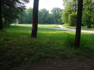 Park Monza (Italy) 8