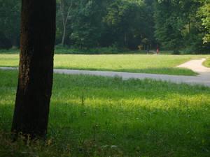 Park Monza (Italy) 9