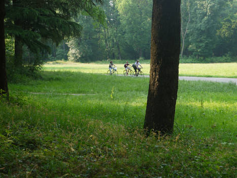 Park Monza (Italy) 10