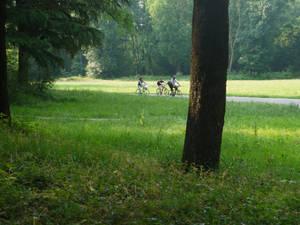 Park Monza (Italy) 10