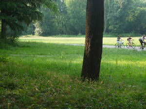 Park Monza (Italy) 11