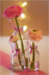 Bottled flower arrangement idea