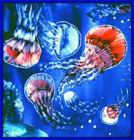 Jellyfish Swirrl Detail View by Villa-Chinchilla