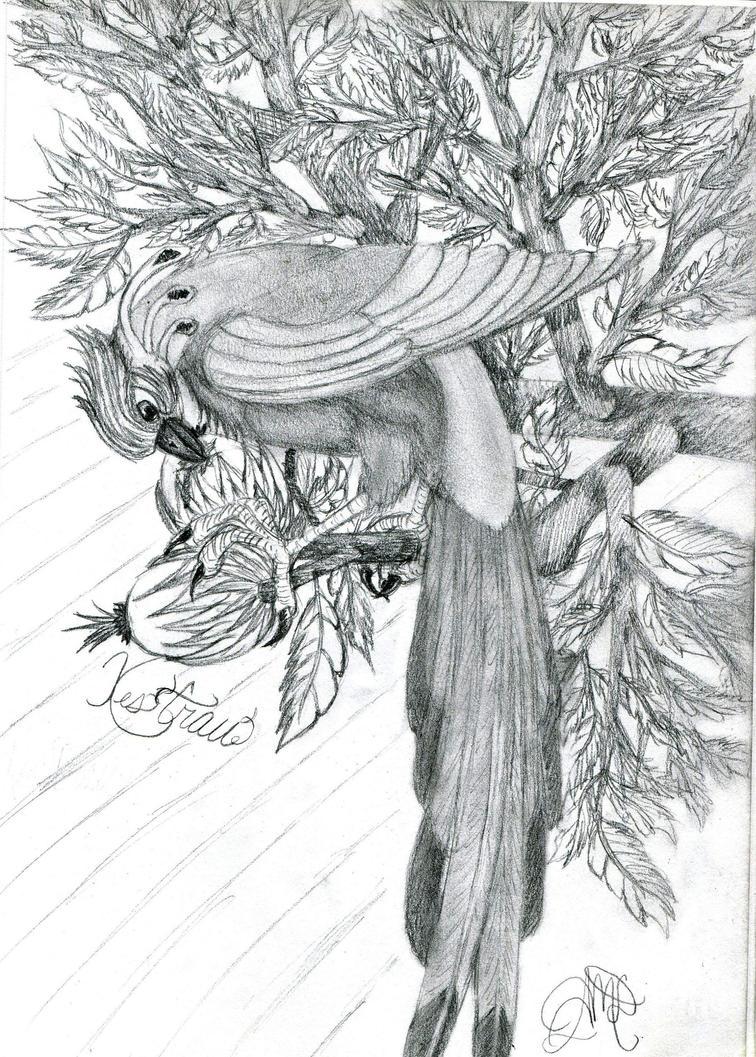 Kes'trau by intrepid-Inkweaver