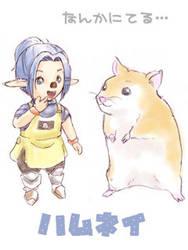 FFXI - Tarutaru and Hamster by powertaiyou