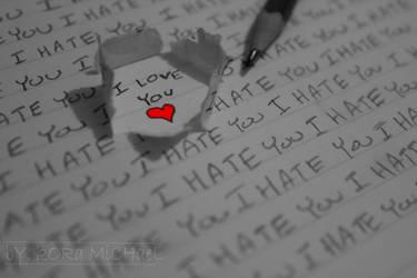 Loving Hatred by DoubutsuGirl6