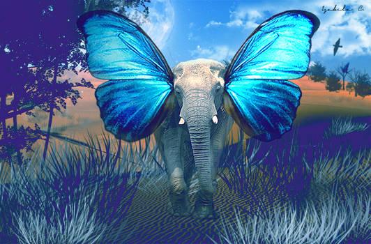 Like Dumbo