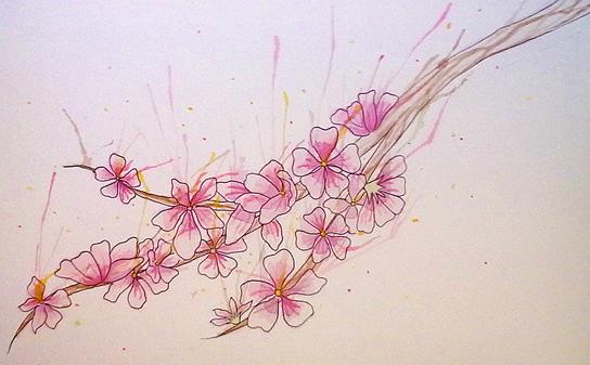 Cherry Blossom by Japhette