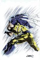 Wolverine by sentive