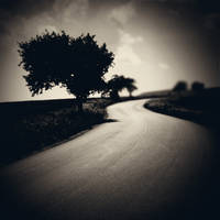 CCXVI. ..road by behherit
