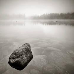 CCCXI. ..in the fog XVIII. by behherit