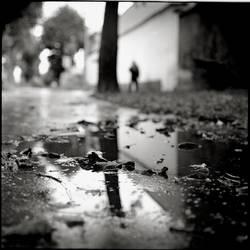 Reflexion - P6 by behherit