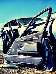 Extricated Buick Side Door by WayvDesigns
