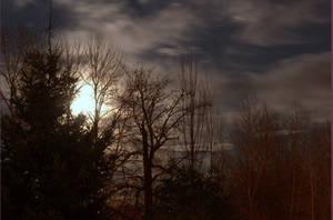 Full Moon Bright as Day by PumaTreks