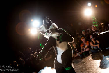BLFC 2016 Dance Comp-60 by PumaTreks