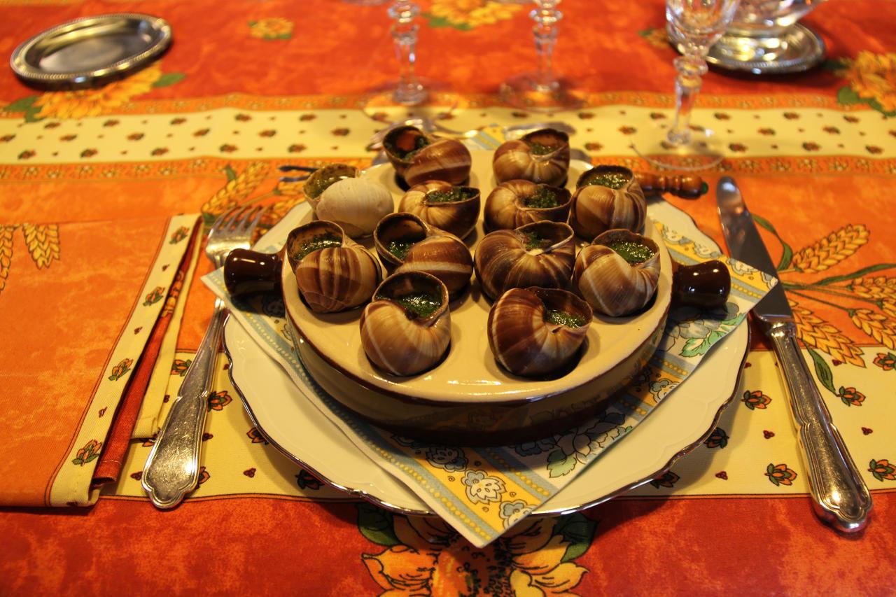 Чем кормить улитку в домашних условиях виноградную