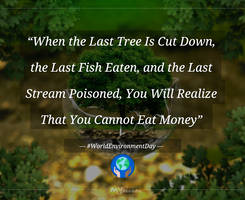 tribute: The Last Tree - quote for Environment Day
