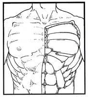 Subdermal armor plating by Grebo-Guru