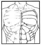 Subdermal armor plating