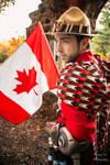I got a flag - Canadian McCree