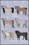 Horse adoptables 1 - CLOSED