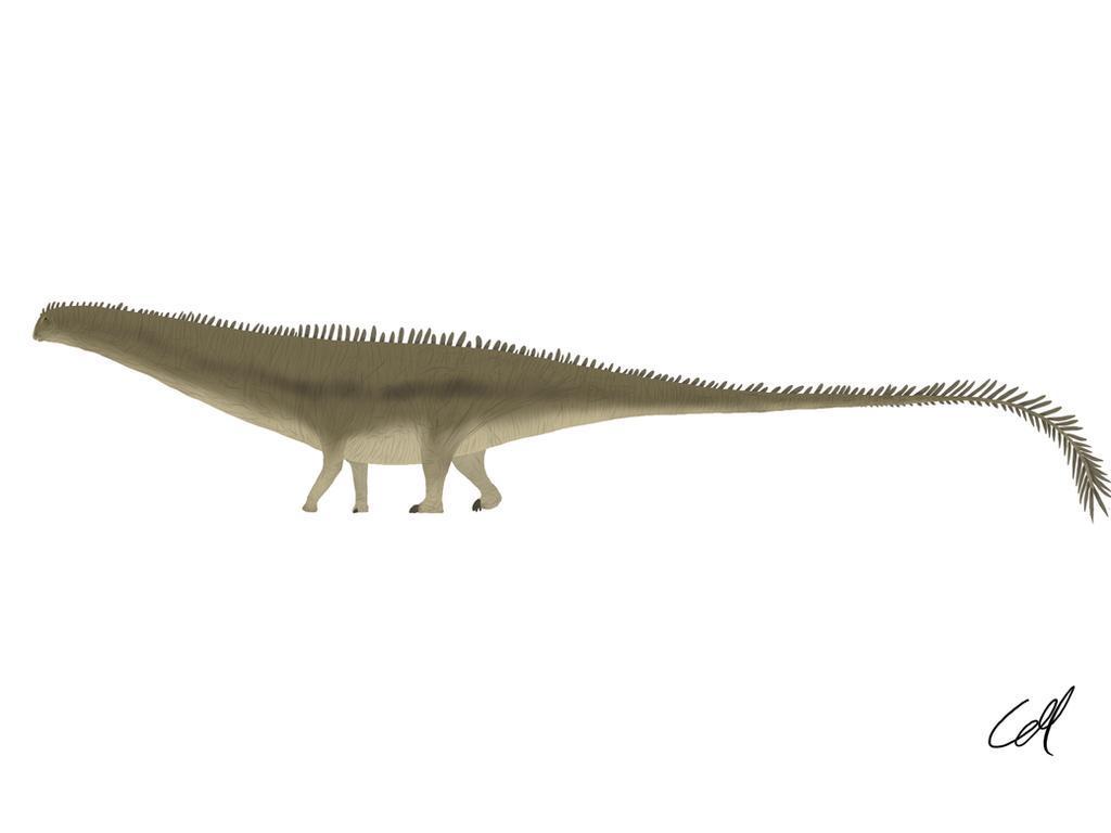 Diplodocus carnegii by sphenaphinae