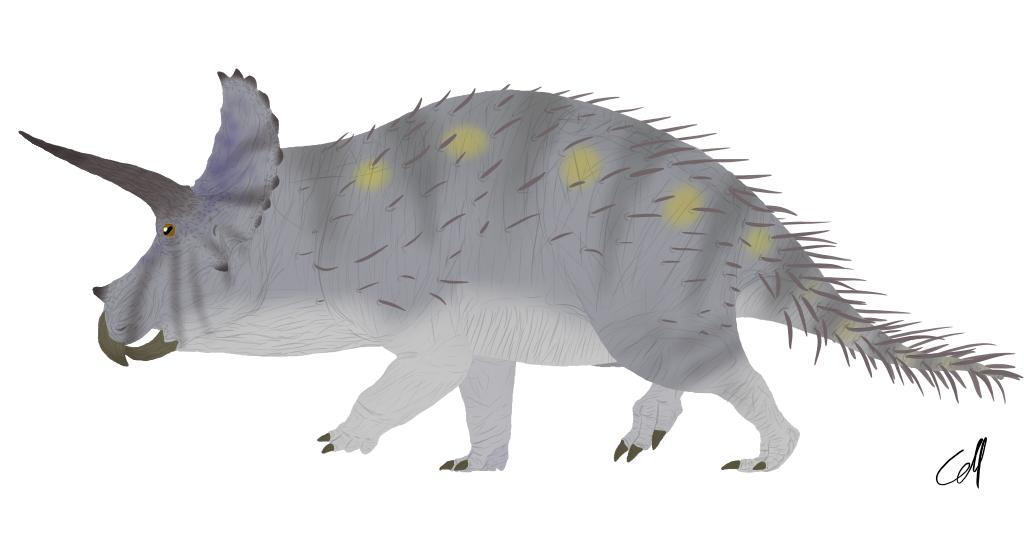 Triceratops horridus by sphenaphinae