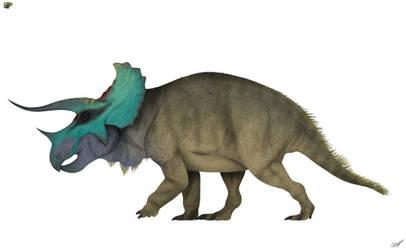 Triceratops horridus 3.0