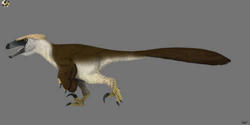 Dakotaraptor steini 2.0