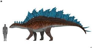 Stegosaurus stenops 3.0