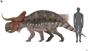 Nasutoceratops titusi 3.0