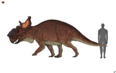 Pachyrhinosaurus lakustai 2.0