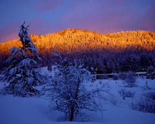 Winter Sunset - a Moment by nighthawkpm