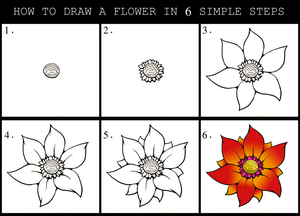 How to draw a flower guide 2 by darylhobsonartwork on for How do i draw a flower