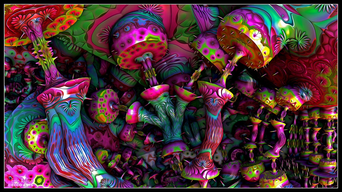 Mushrooms on Pinterest | Psychedelic, Trippy and Mushroom ...